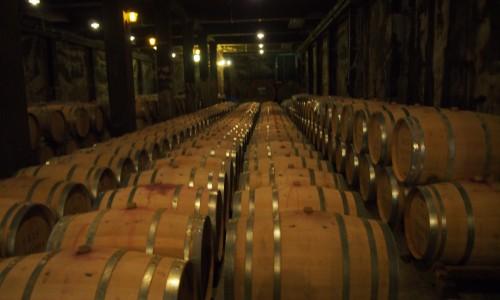 すごい数のワイン樽