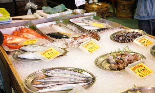 沼津魚市場の魚屋