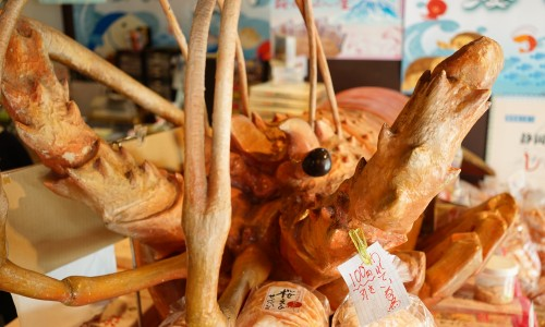 沼津魚市場の海老(エビ)