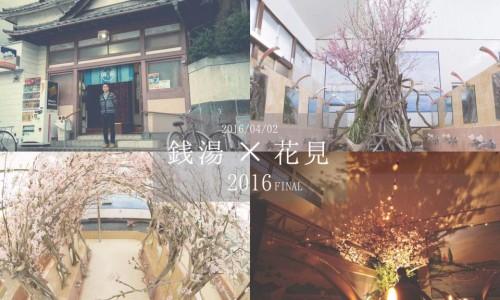 清水湯・花見祭2016