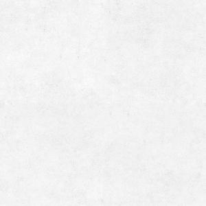AKIRA DRIVE背景画像