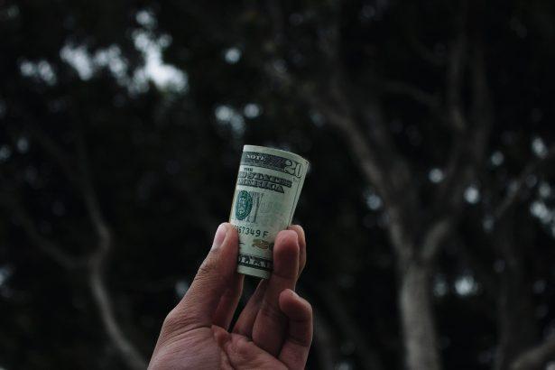 世界で働くスキルを学んでお金を稼ごう!