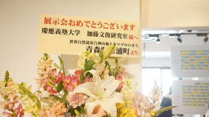 慶應SFCの卒業制作発表会「フィールドワーク展」3
