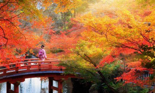 パートナー(彼氏・夫)の出世を祈願する神様は「磐長姫(イワナガヒメ)」貴船神社など祀られてる神社を紹介!